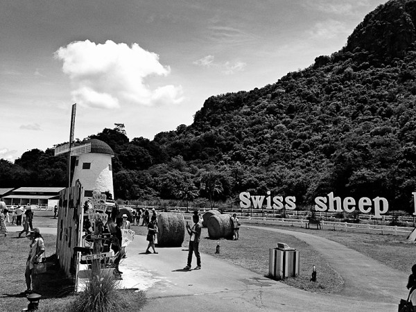 Swiss sheep farm - hua hin