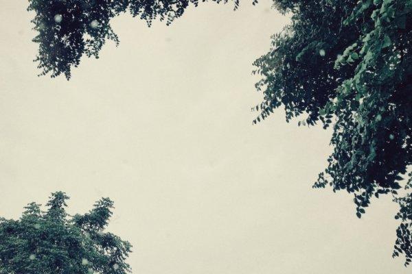 ฝนกันยา
